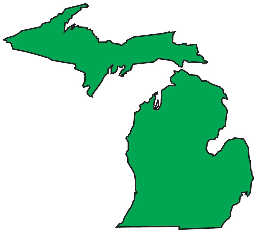 An outline of the state of Michigan - black outline and green fill.